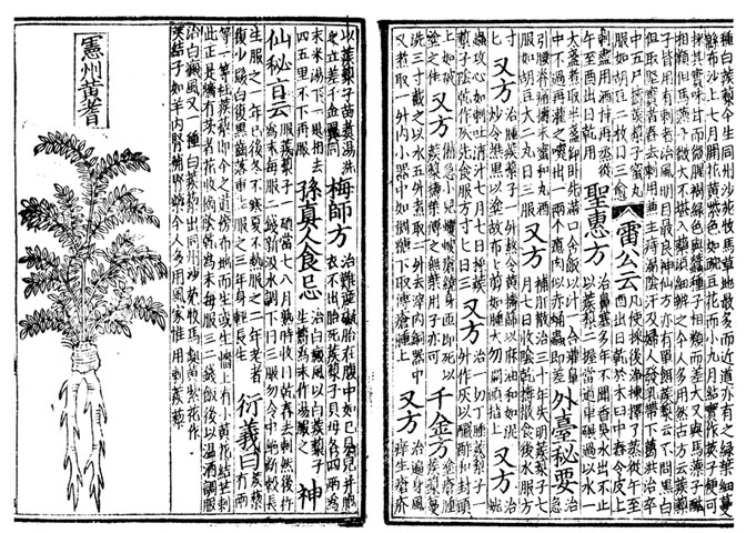 how to write hello in ancient china