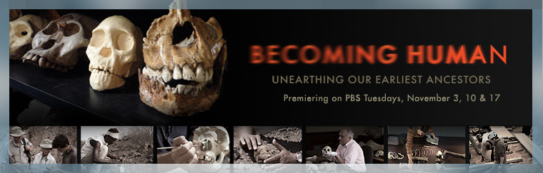 Becoming Human: Unearthing Our Earliest Ancestors. Airs on PBS November 3, 10, 17, 2009