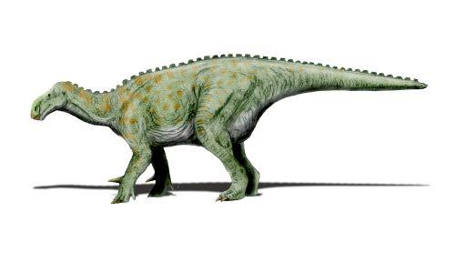 Iguanodon_NT