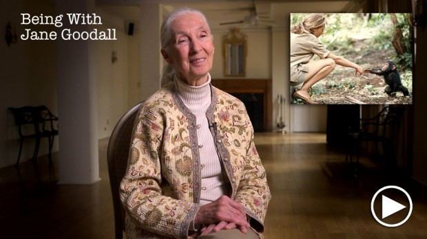 JaneGoodall-Being_03c_FB