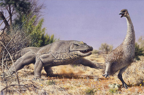 Megalania and Genyornis