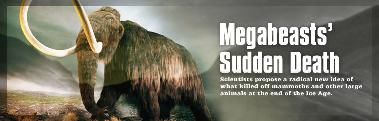 Megabeasts' Sudden Death: Scientists propose a radical new idea of what killed off mammoths and other large animals at the end of the Ice Age. Airs on PBS March 31, 2009