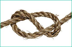 figure eight knot