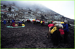 Loading yaks at base of trail
