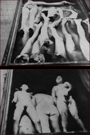adrienne bailon naked galleries blogs