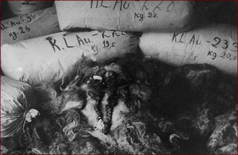 Nova Online Holocaust On Trial Hair