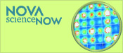 NOVA scienceNOW: Personal DNA Testing