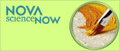 NOVA scienceNOW: Art Authentication