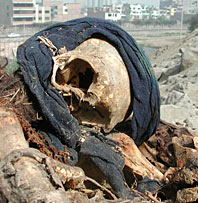 Skeleton with blue cloth