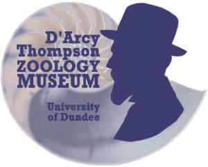 D'Arcy Thompson Zoology Museum, University of Dundee
