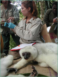 Mayor records blood sample