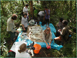 taking measurements