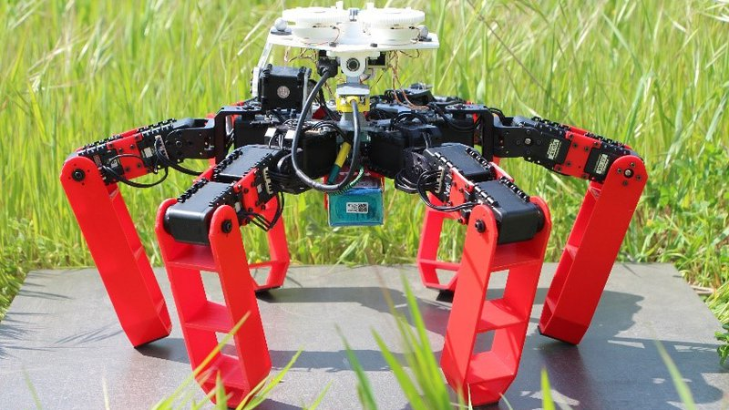 Forget GPS—This Robot Navigates Like an Ant