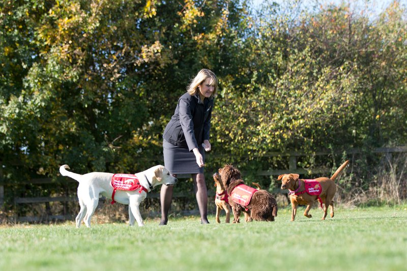 Dr Claire Guest, Medical Detection Dogs with dogs.jpg