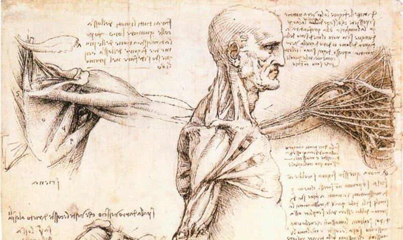 Leonardo_da_Vinci_Story_Image.jpg