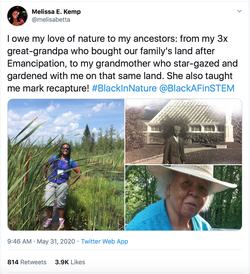 Melissa Kemp tweet #BlackInNature