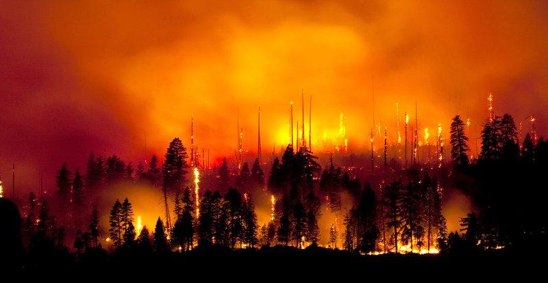 Wildfire_Yosemite.jpg
