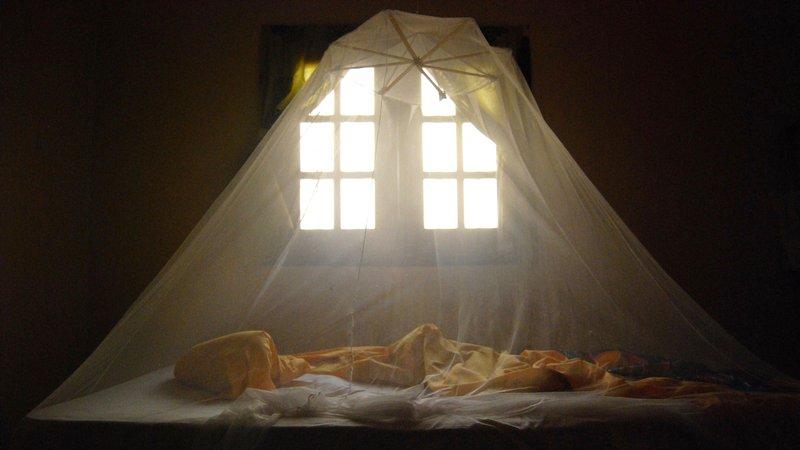 bed-net