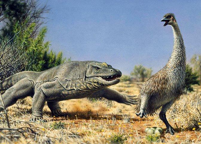 long-vanished big beasts of Pleistocene Australia