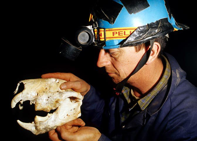 Paleontologist John Long