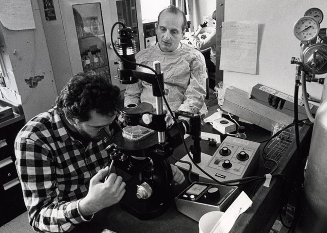 Folkman with Donald Ingber at microscope
