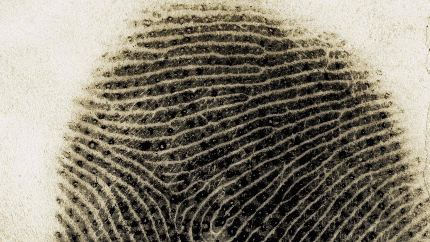 Forensics on Trial | NOVA | PBS