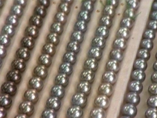 black pearls from South Pacific