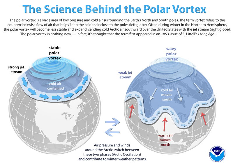 noaa-illustration.png