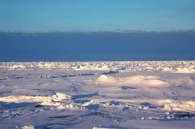 Multiyear Sea Ice