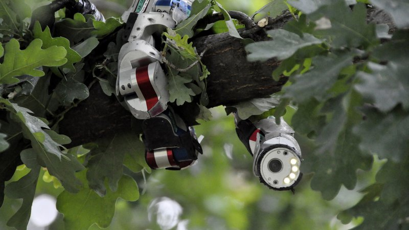 Rise of the Robots   NOVA   PBS
