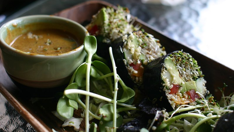 vegan-lunch_1024x576