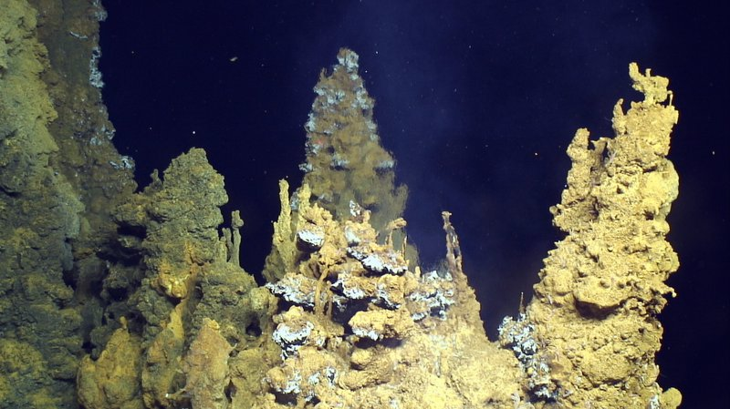 Origins of Complex Life Uncovered in the Ocean Deep-vent.jpg