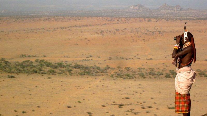 Reria bioculars