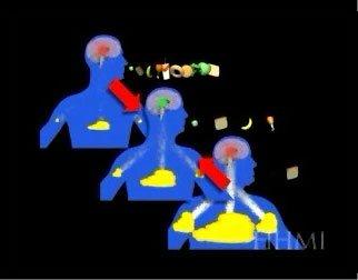 leptin animation