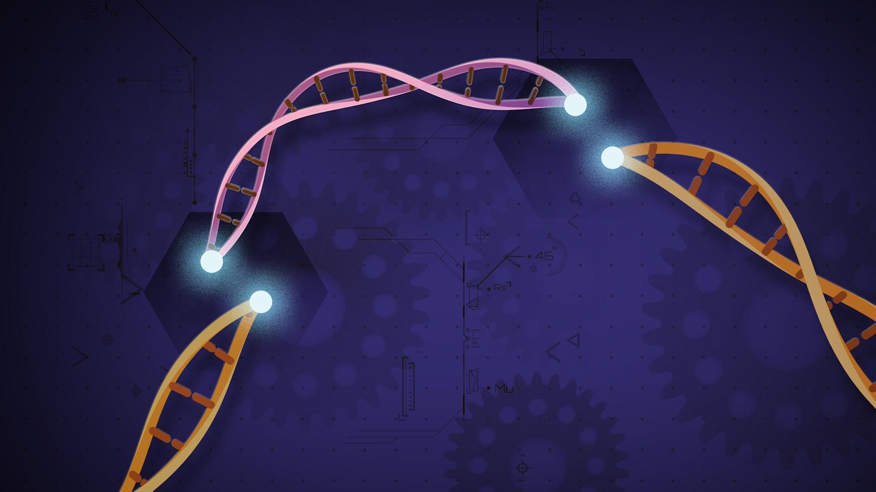 CRISPR-large.jpg