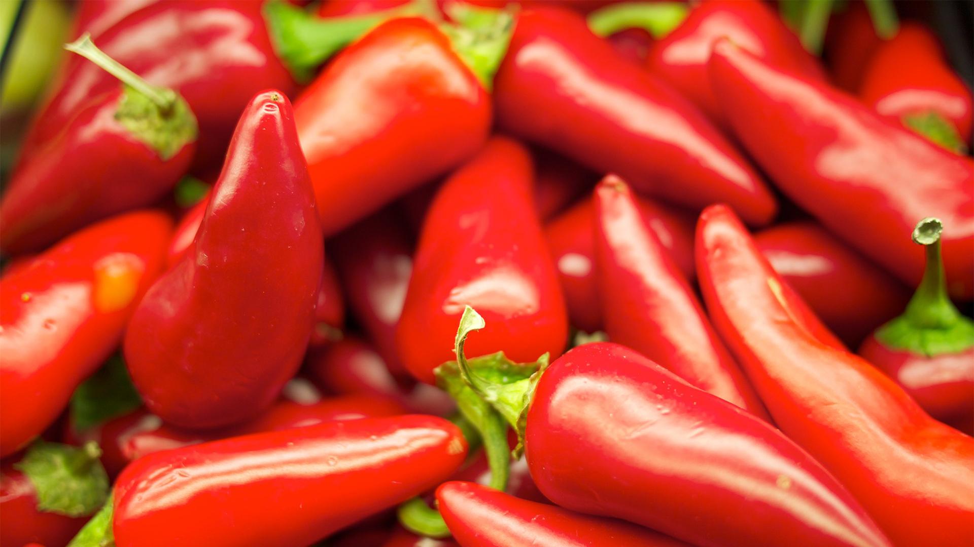 Capsaicin red hot chili pepper