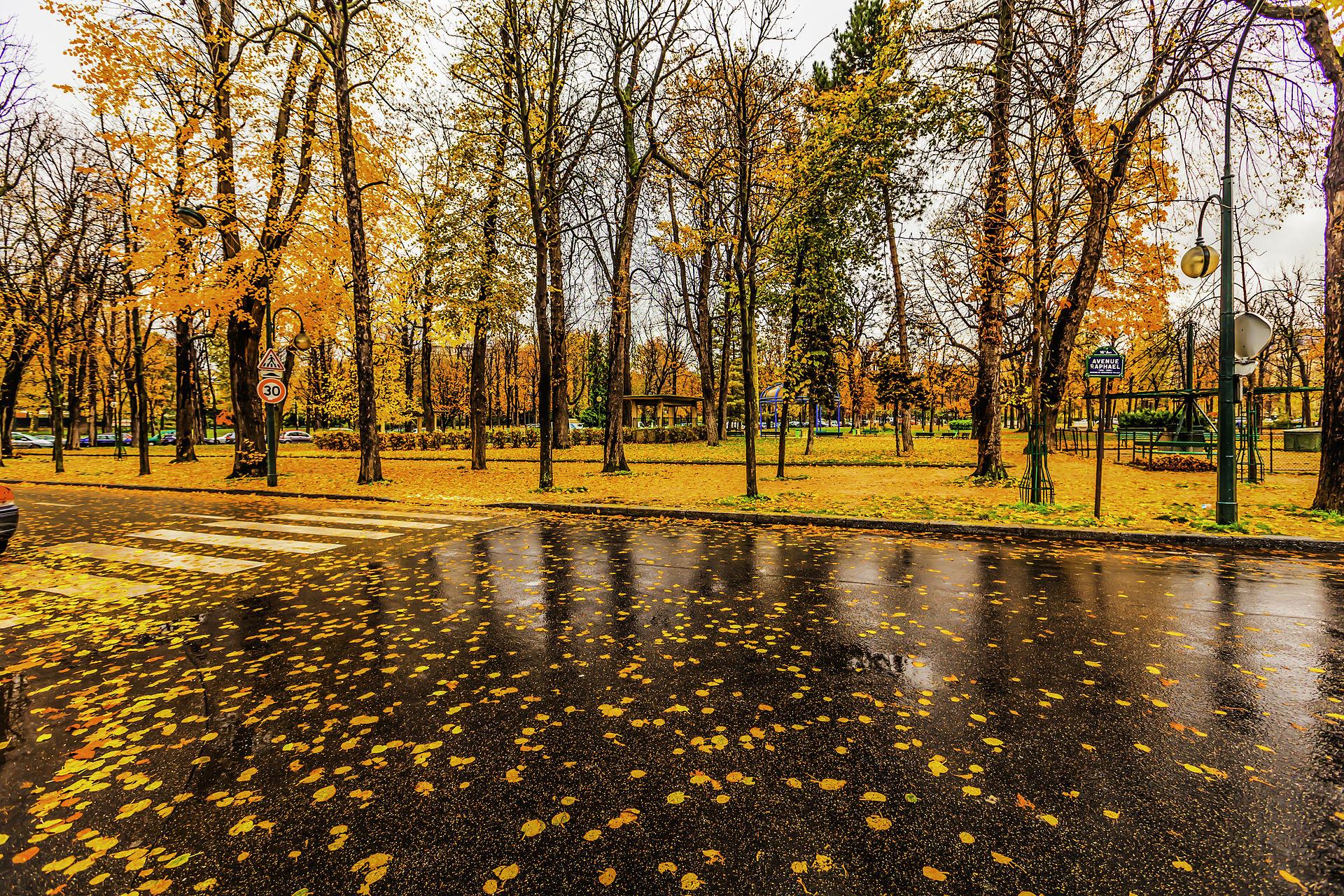 Paris_raining_autumn_cityscape_(8252181936).jpg