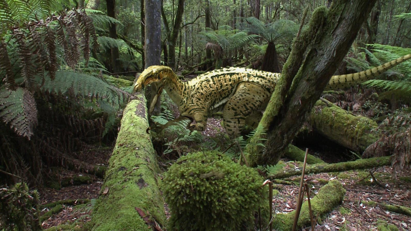 Australia's First 4 Billion Years: Monsters Hero