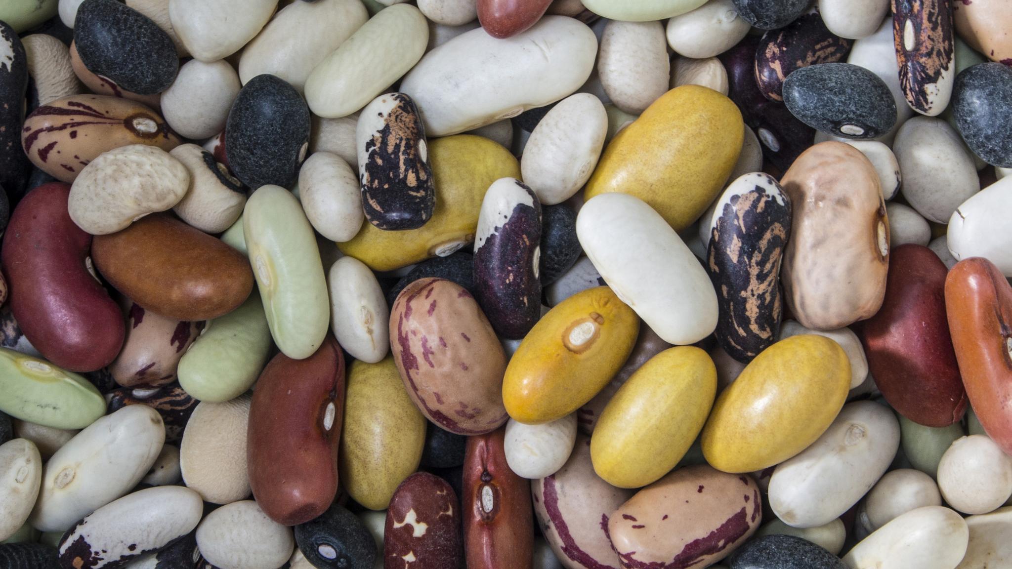 beans_2048x1152