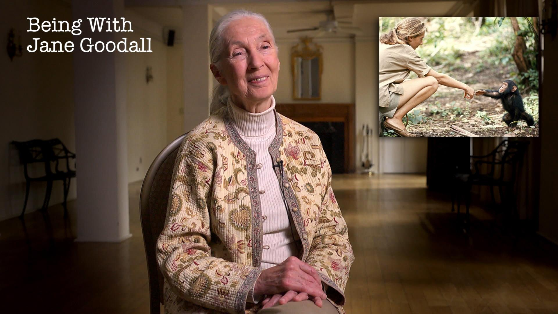 Being with Jane Goodall Hero