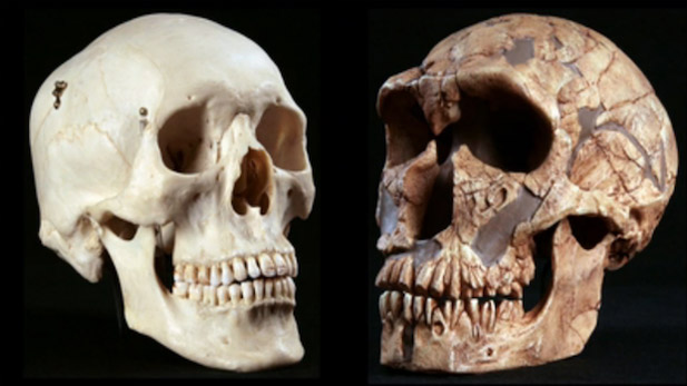 The Biggest Misconceptions About Evolution, And What We Can Do About Them (Part 1)