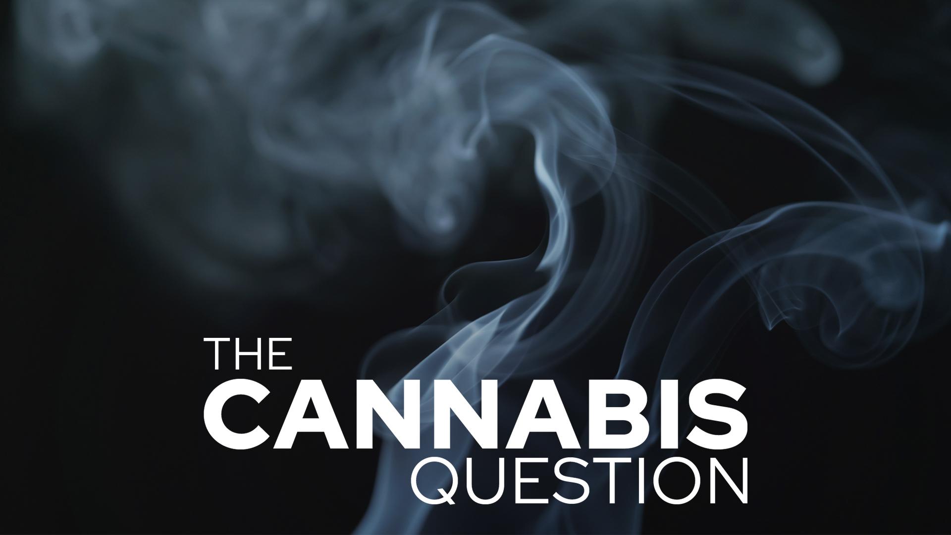 cannabis-question.jpg