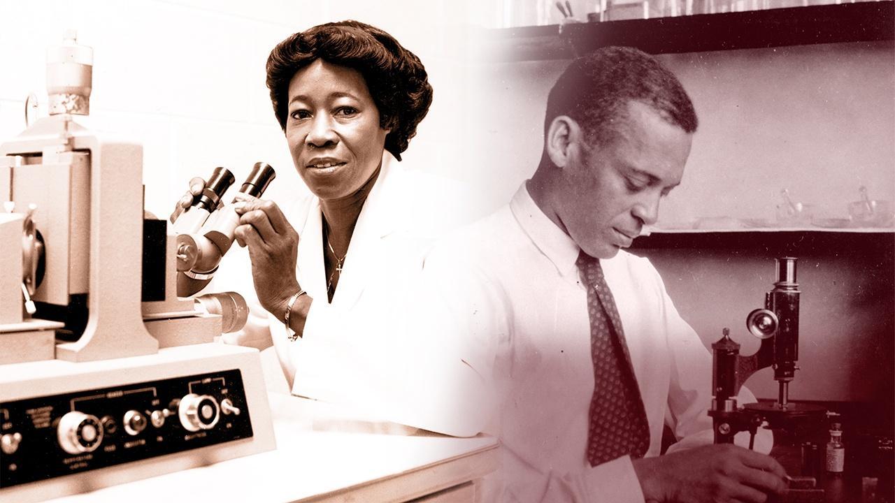 Celebrating Black Scientists Hero