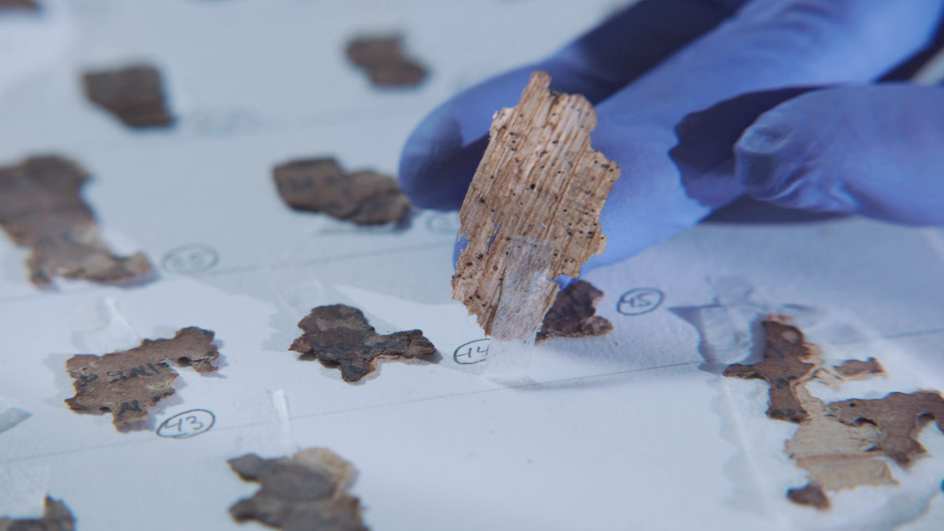 Dead Sea Scroll Detectives.jpg