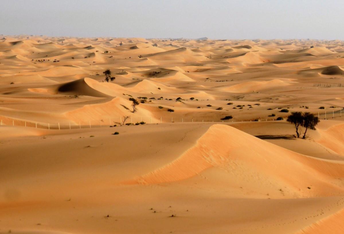thanks to climate change the sahara is inching south nova pbs