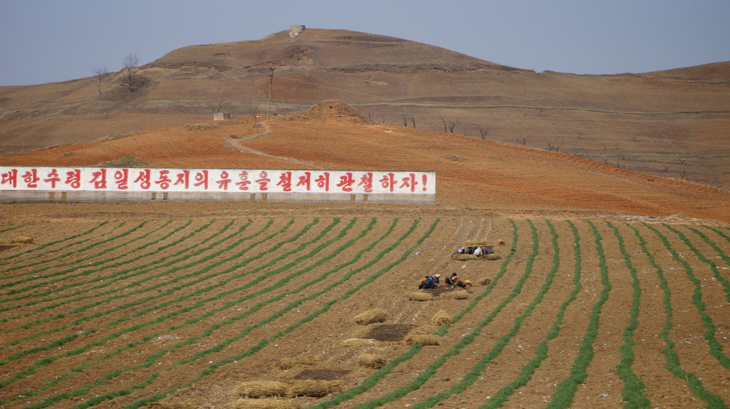 Countryside near Wonsan