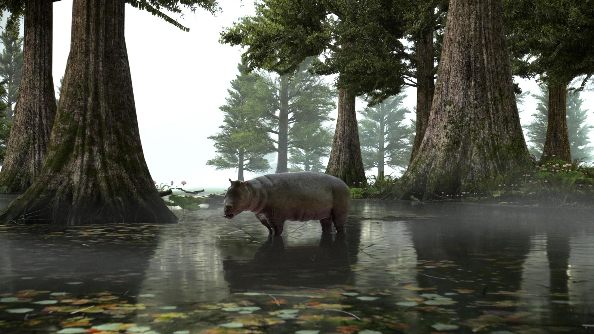 Fifty Million Years Ago, the Arctic Was a Warm Swamp Hero