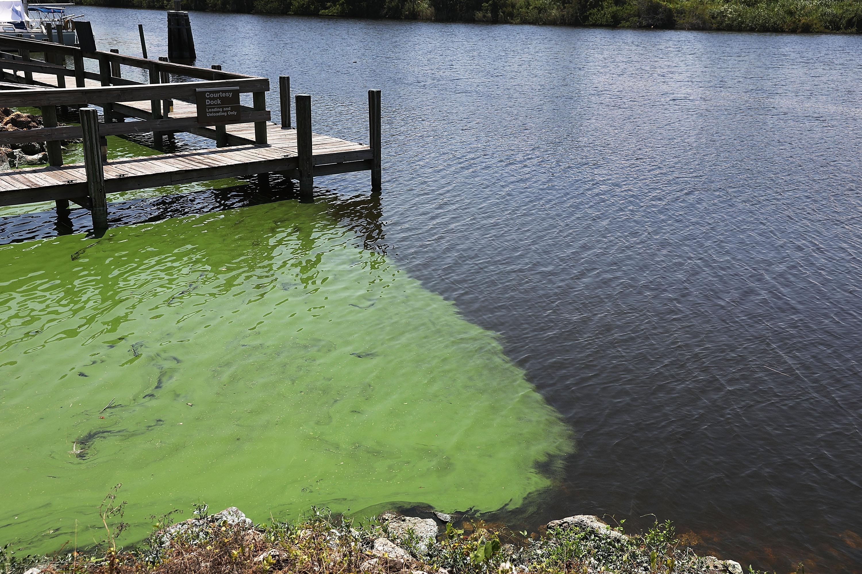 Overflow Of Lake Okeechobee Drained Into Reservoir In Effort Of Keeping Harmful Lake Water From Nearby Estuaries