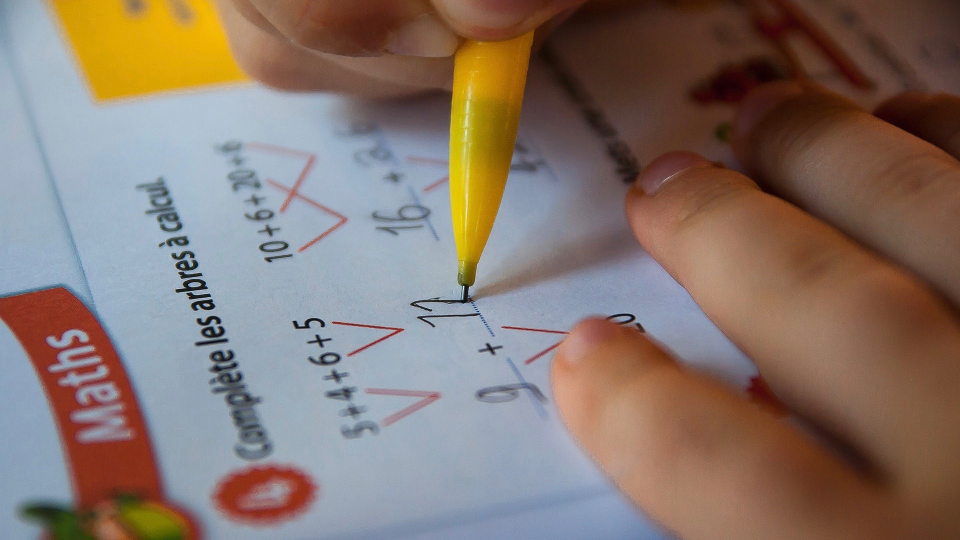 Brains of Bilingual People Solve Math Problems Differently