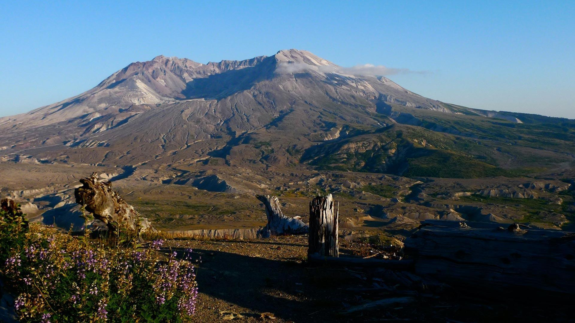 Mt. St. Helens: Back From the Dead Hero